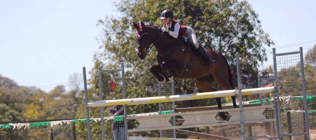 redland-pony-club-slider-2